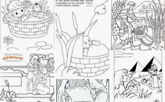 Free Bible Coloring Page - Manna in the Desert | Bible coloring ... | 325x525